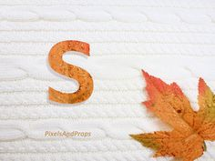Uppercase letter S with glitter leaf and sweater knit. #fall #autumn #alphabet #typography #initial #monogram #font | maple leaf