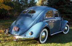 1952 split window beetle