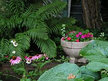 Shade garden - Wikipedia, the free encyclopedia
