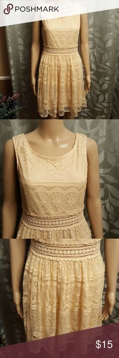 Forever 21 Lace Dress Like New Comfortable Fully lined Juniors Large Forever 21 Dresses Mini