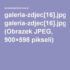 galeria-zdjec[16].jpg (Obrazek JPEG, 900×598pikseli)