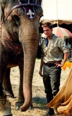 """Tai and her co star Robert Pattinson from the movie """"Water for Elephants"""". Elephant World, Elephant Love, Robert Pattinson Movies, Kristen Stewart Movies, Water For Elephants, Edward Bella, Edward Cullen, Robert Douglas, Christoph Waltz"""