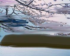 Untitled (Sakura by Sandra Kantanen Landscape Photography, Art Photography, Internet Art, Scandinavian Art, Amazing Art, Original Artwork, Contemporary Art, Scenery, Art Gallery
