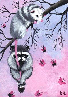 aceo print raccoon opossum tree butterfly by WoundedTreeGallery