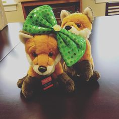 #AdmissionsVixens Rose and Briar got into some St. Patrick's Day mischief as they packed up and prepared for their next round of college fairs! Rose will be visiting Boston, MA and Briar will be in Charlotte, Raleigh, and Mebane, NC. Be sure to look for them at your local fairs!