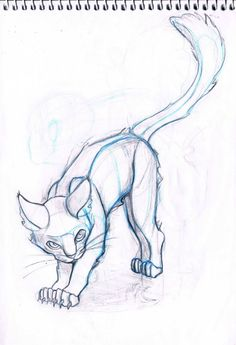 cat_sketch_by_sofmer-d4rlvw3.jpg