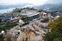尾道は海と山に囲まれた港町で瀬戸内の小京都と云われています。情緒豊かな雰囲気が漂う街並みが多く、映画の街としても有名です。今回は尾道に行くなら、ぜひここに!という観光スポットをご紹介します!1.千光寺公園尾道のシンボルとなっている公園です。さくらの名所100選にも選ばれ、四季折々の自然の風景を楽しむことができます。公園内には、千光寺、尾道市立美術館、頂上展望台(恋人の聖地)などがあります。頂上展望台から望む夜景は、夜景100選にも選ばれたほどです。 ■基本情報 ・名称:千光寺公園 ・住所:広島県尾道市西土堂町19-1...