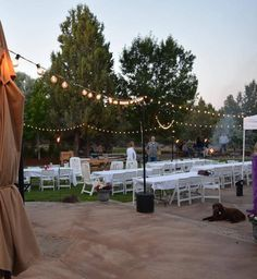 IYN Tank Stands - Hang String Lights Indoors or Outdoors. Patio Wedding, Cheap Backyard Wedding, Spring Wedding, Rustic Wedding, Tank Stand, Bistro Lights, Indoor String Lights, Backyard Lighting, Outdoor Lighting
