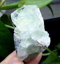 Glass transparent cubic Green Fluorite from Xianghuapu Hunan China 15-337 #UnbrandedGeneric