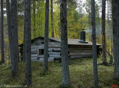 Louhioja Small Cabins, Log Cabins, Picture Creator, Diy Sauna, Lean To, Saunas, Treehouses, Survival, Cottage