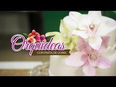 COMO PREPARAR UNA ORQUIDEA (prepare orchids) - YouTube