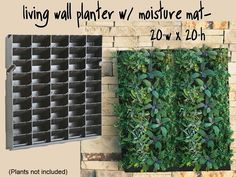 "Large Living Wall Planter - 20""W x 20""H - DIY Projects 