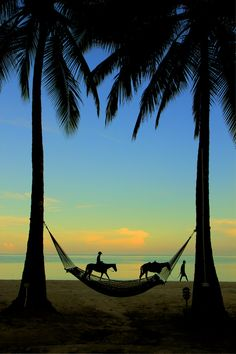 Jamaica by Melissa Hahn  I saw a scene similar to this at sunset one night.  The figures looked like beautiful silhouettes.