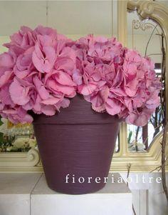 Fioreria Oltre/ Pink hydrangeas