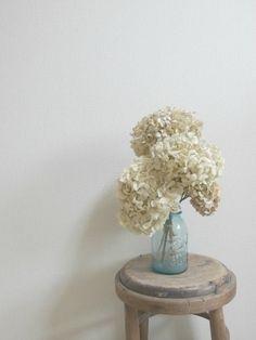 ドライフラワー dryflower 紫陽花 アジサイ FLEURI blog