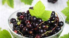Vähäkalorinen vitamiinipommi:Mustaherukka