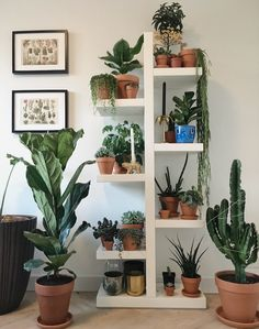 Plant Stand Design Ideas for Indoor Houseplants indoor plants; - All For Herbs And Plants Hanging Plants, Indoor Plants, Indoor Plant Stands, Boho Dekor, Low Light Plants, House Plants Decor, Decoration Plante, Bedroom Plants, Plant Shelves