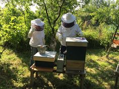 An in-depth discussion of the details to consider as you purchase your beehive