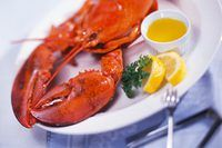 What Should You Serve As an Appetizer Before a Lobster Dinner? | eHow