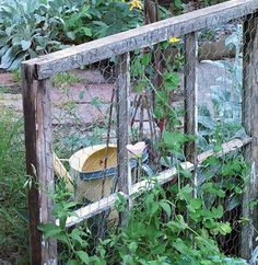 Make a Trellis by stapling chicken wire to a window frame.