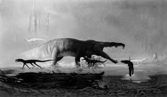 """Rutiodon and Hesperosuchus by Douglas Henderson    """"Phytosaurs were long-snouted and heavily armoured, bearing a remarkable resemblance to modern crocodiles in size, appearance, and lifestyle, as an example of convergence or parallel evolution."""" Wikipedia."""