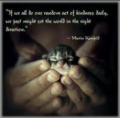23 Best Acts Of Kindness Images Kindness Matters Human Kindness Pets