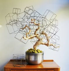 Gold Leaf Design Group Wire Cube Set of 4 *** Read more at the image link. (This is an affiliate link) Gold Leaf Design Group, Art Fil, Shop Interior Design, Wire Art, Wall Sculptures, Three Dimensional, Flower Art, Cube, Glass Art