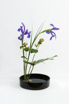 Modern & Contemporary Ikebana Arrangement - The Flower Sculptor - Shelli Crouse