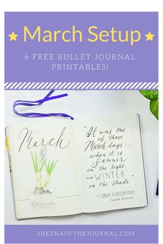 My March setup in my Bullet Journal. Get your free March planning pack!