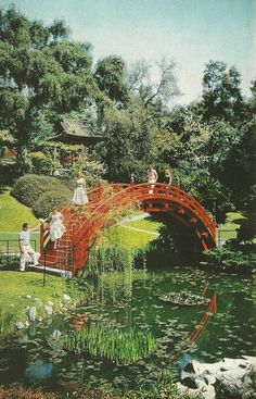 Japanese tea garden in Pasadena, California  National Geographic | February 1958. Must do this again!
