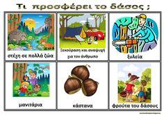 Ζήση Ανθή : Εποπτικό υλικό για το δάσος στο νηπιαγωγείο .    Τι μας προσφέρει το δάσος ;         Το δάσος είναι πηγή οξυγόνου , συγκρατεί ... Forest Theme, Forest Animals, Trees To Plant, Activities For Kids, Safari, Kindergarten, Preschool, Places To Visit, Education