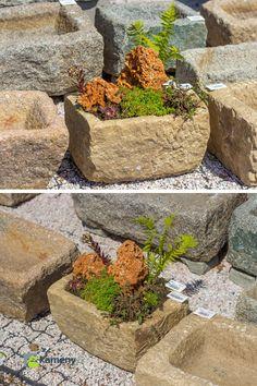 Kamenné koryto z přírodního kamene je menších rozměrů a vhodné je zejména do exteriéru. Využití má pro zvířata, ale také pro osazení květinami jako dekorační prvek zahrady  Krásně vypadá osázené rostlinami. Plants, Plant, Planting, Planets