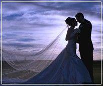 Weddings... Weddings...