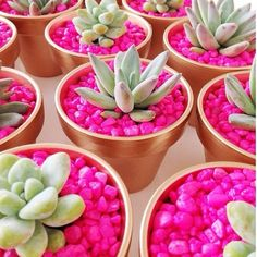 Fish tank gravel and succulents. Gold painted pots. Not sure about the pink, but LOVE the idea...