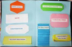 Studiamando liberamente: Lapbook: L'acqua Coding, Camilla, Books, Montessori, Oxford, Creative Activities, School, Environment, Teaching Resources