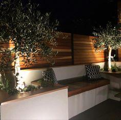 Night shot of this Architectural/Mediterranean themed garden Night Shot, Garden Design, Architecture, Plants, Arquitetura, Plant, Architecture Illustrations, Yard Design, Planting