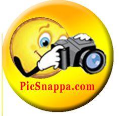 PicSnappa pin badge
