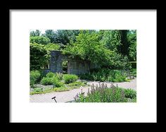 nature, garden, stone wall, landscape, courtyard, botanical garden, ohio, toledo, michiale schneider photography