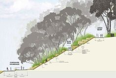 Barangaroo Point PWP Landscape Architecture is part of Landscape architecture graphics - Landscape Architecture Design, Architecture Graphics, Landscape Plans, Architecture Drawings, Urban Landscape, Architecture Symbols, Architecture Career, Landscape Steps, Architecture Photo