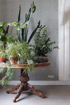 chalk printed eco texture non woven wallpaper Woven wicker Grayish warm gray #behang #geweven #breisel #botanisch #planten #cactus #botanical #interior #interieur #vtwonen #estahome