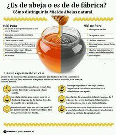 Curiosidades de la miel.