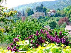 Deutsche Weinstraße | German Wine Route | Rhineland-Palatinate Travel