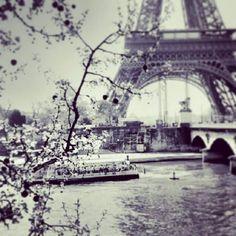 Sari Musdar's Journey: 10 Things To Do At Paris