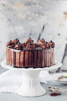 Tort amandina, cu blat de cacao, sirop de rom si crema de unt How To Make Chocolate, Melting Chocolate, Chocolate Cake, History Of Chocolate, Torte Recepti, Romanian Food, Romanian Recipes, Cupcakes, Breakfast Snacks