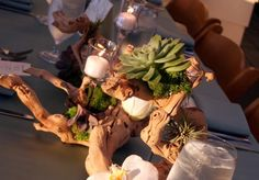grapewood branches with white phalaenopsis orchids blooms, white dendrobium blooms, and clusters of fresh green moss with floating candles in glassware and votives surrounding.