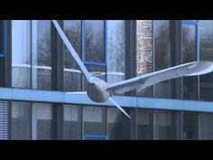 Festo's SmartBird robot features innovative flapping wings that allow it to fly and glide through the air like a real bird.