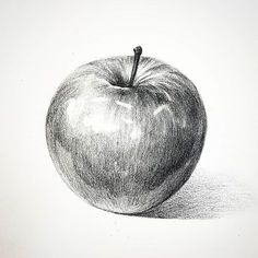 Trendy fruit drawing pencil apples, I grouped the above questions concerning the pencil drawing … Apple Sketch, Fruit Sketch, Pencil Sketch Drawing, Pencil Art Drawings, Cool Art Drawings, Art Drawings Sketches, Drawing Apple, Still Life Sketch, Fruits Drawing