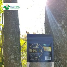 DRINK THIS HERBAL TEA, AND THERE WILL BE SUN AT THE END OF THE TUNNEL' ☀️🌝🌞 GREAT HOT AND COLD, JUST ADD LEMON AND HONEY! 👌💪 And its great for INHALATION for sinuses 👌💪 Maybe no one knows, but this herbal tea called 'Four Thieves Tea' is the first one trusTEA developed in Dublin 2018. That's how our story started. But, the most important is the story behind this tea, this is actually tea for boosting immunity, carefully chosen ratio from four very healthy herbs. Give it a try! 😍 Four Thieves, Inhalation, Premium Tea, Healthy Herbs, Tea Brands, Herbal Tea, Teas, Dublin, Herbalism