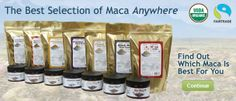 A variety of maca powders