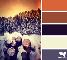 Great list of color palettes!  Winter color
